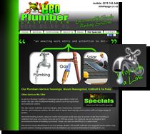 eco plumber