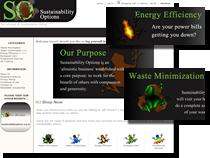 sustainability options